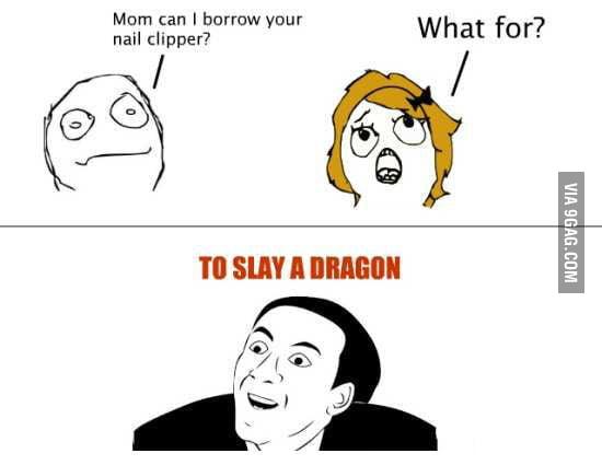 Dragon slayer, obviously!