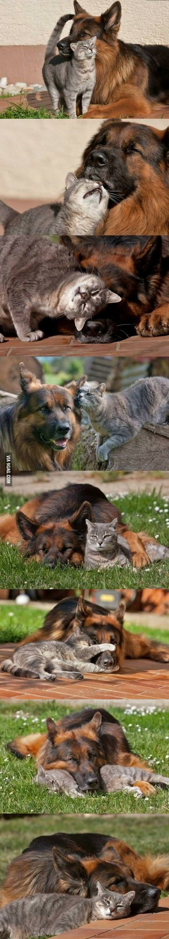 The best buddies.