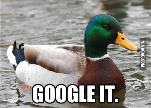 Actual Advice Mallard on Everything