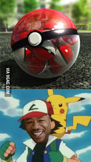 Yo Dawg, I Heard You Like Pokeballs...