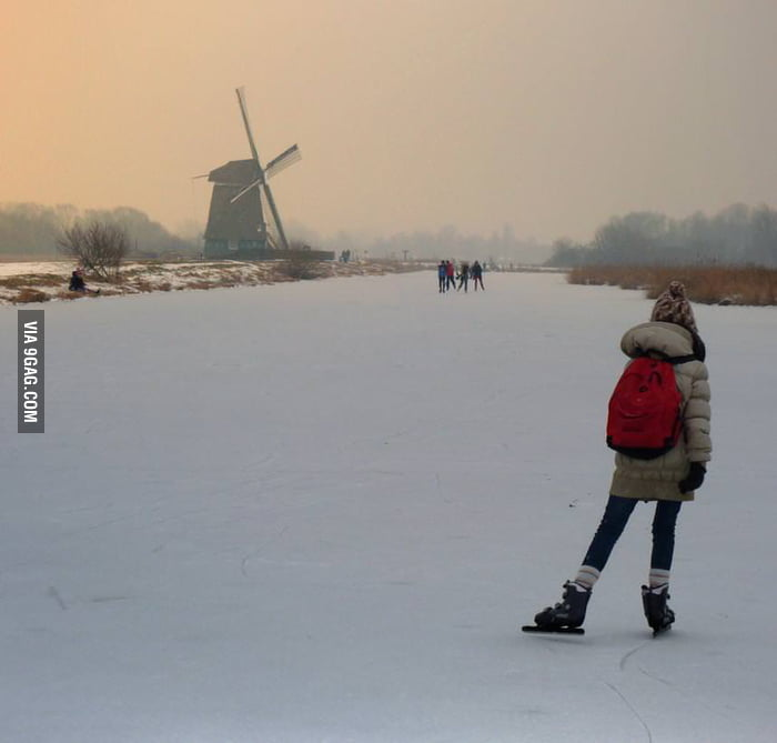 Going to School in the Netherlands