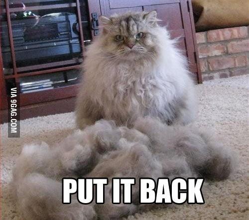 Put it back, NOW!