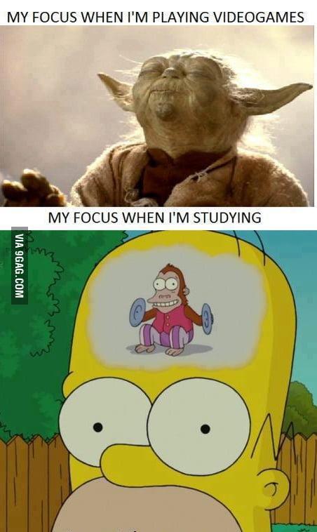 Focus brain focus
