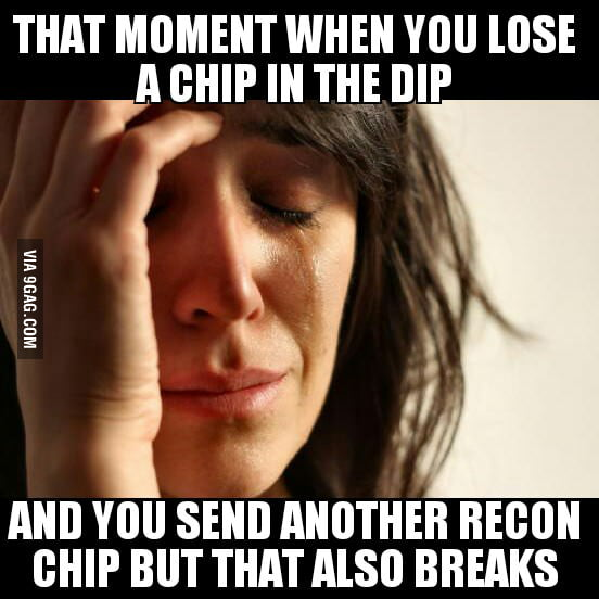 Recon Chips
