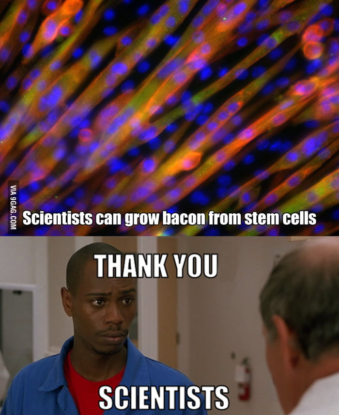 Thank you scientists.