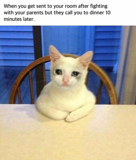 Best 30+ Crying Cat fun on 9GAG
