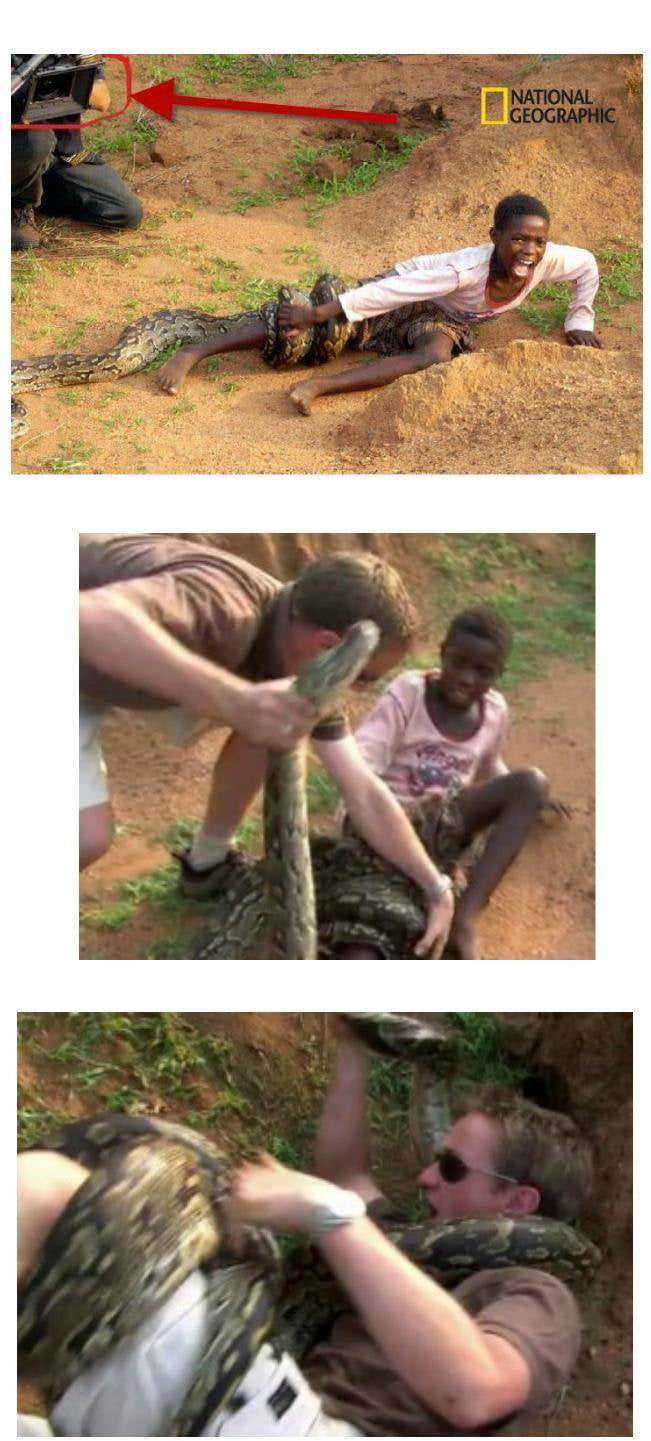 The full picture