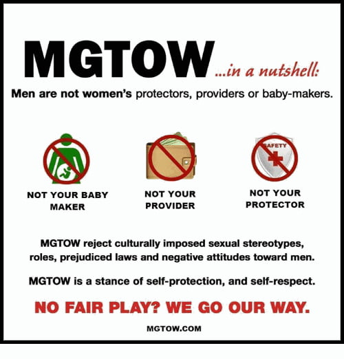 You don't have to be a MGTOW to go your own way  - 9GAG