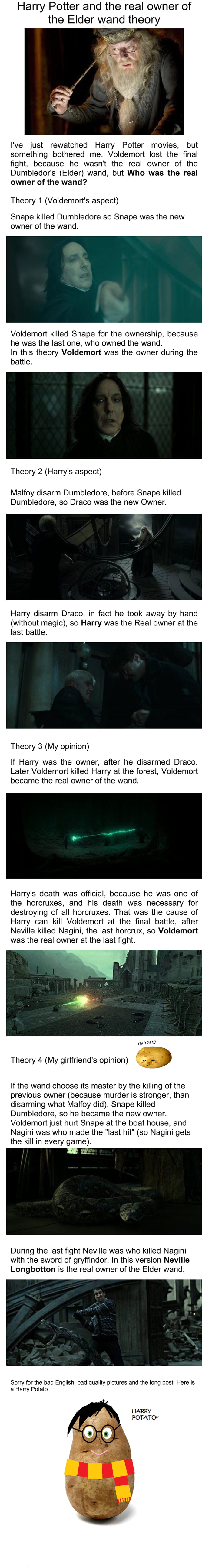 Harry potter and the real owner of the elder wand theory for Harry potter wand owners
