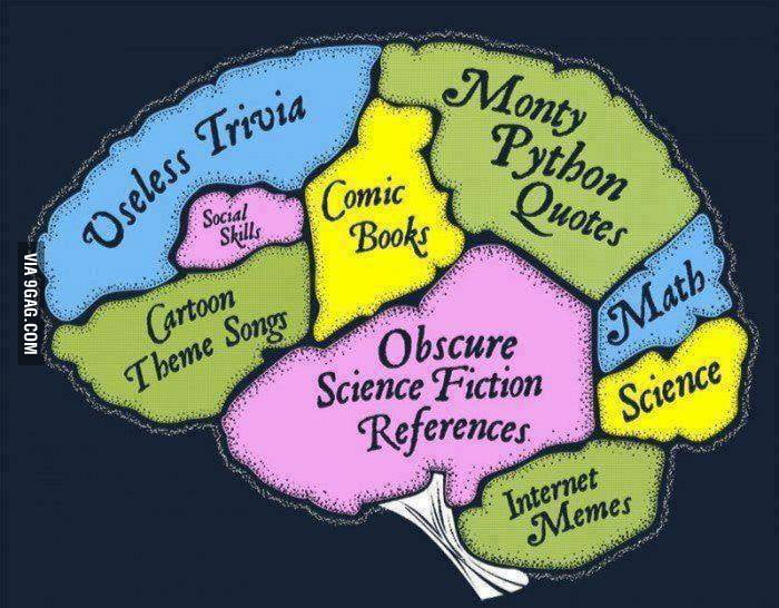 The brain of most people on the Internet.