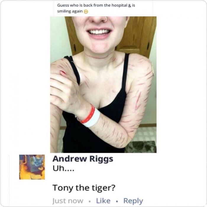a4bRqQy_700b oh tony the tiger 9gag