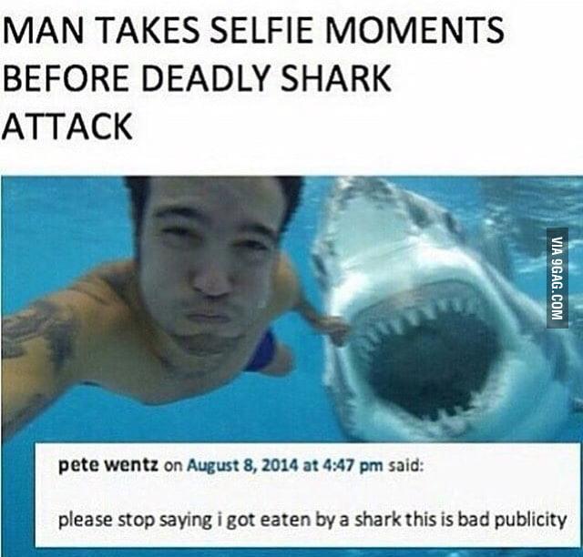 Shark Selfie Pete Wentz