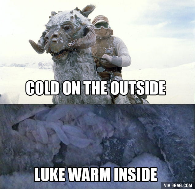 The Temperature Of A Tauntaun
