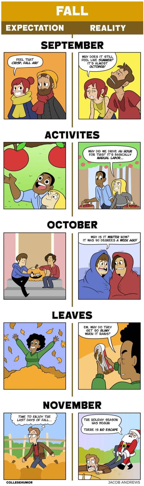 Fall: Expectations Vs Reality