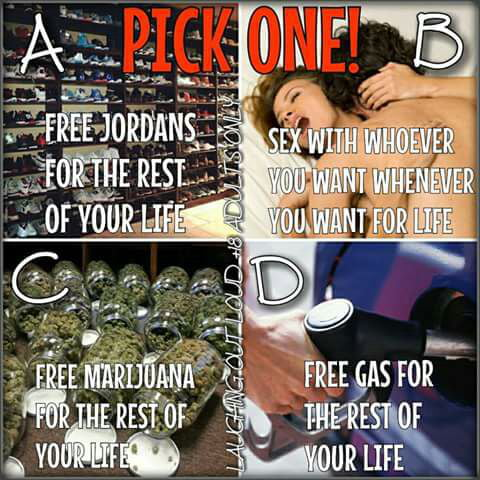 Pick one and why