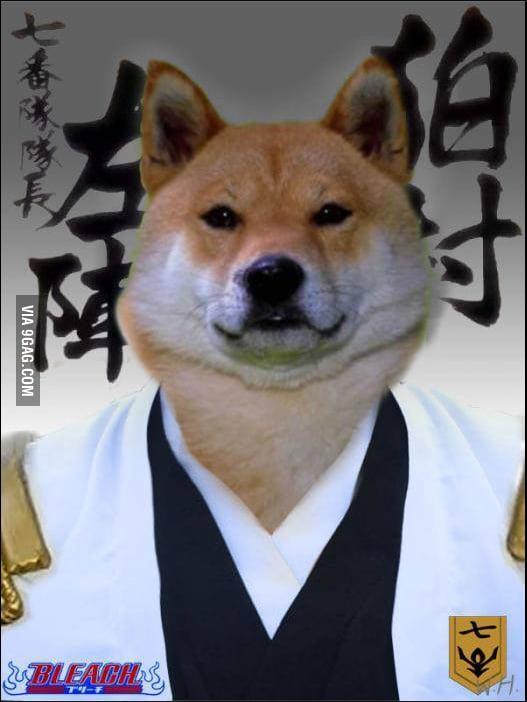 Doge Cosplaying Komamura Sajin From Bleach 9gag