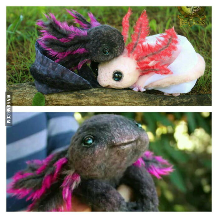 Baby Axolot plushies you can buy. It's so fluffy I could die! - 9GAG