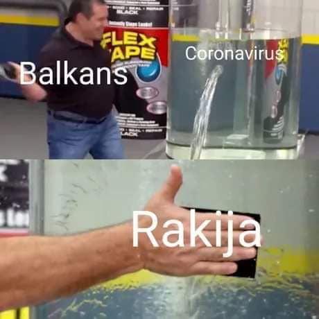 rakia kills corona virus