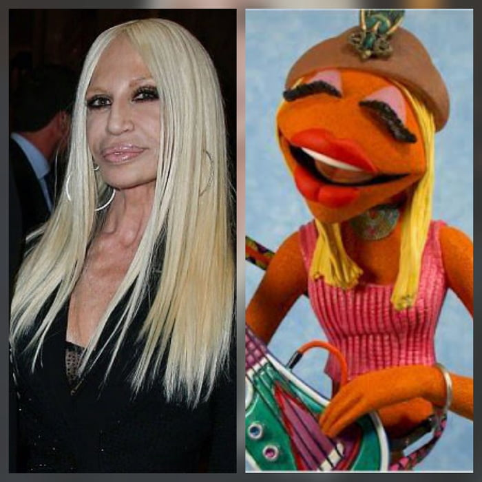Am I the only one who thinks Janice in the Muppets looks