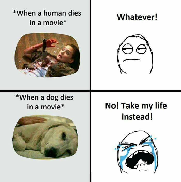 When dog die  Lol - 9GAG