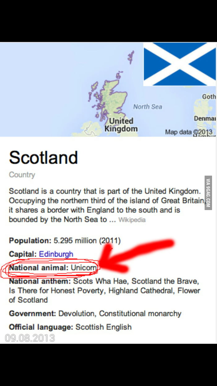 Image of: Unicorn So Googled Scotlands National Animal Was Not Dissapointed 9gag So Googled Scotlands National Animal Was Not Dissapointed