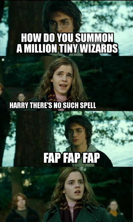 you re a wizard harry 9gag