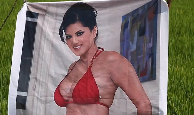 site theme interesting full coverage bikini swimsuit remarkable, the amusing