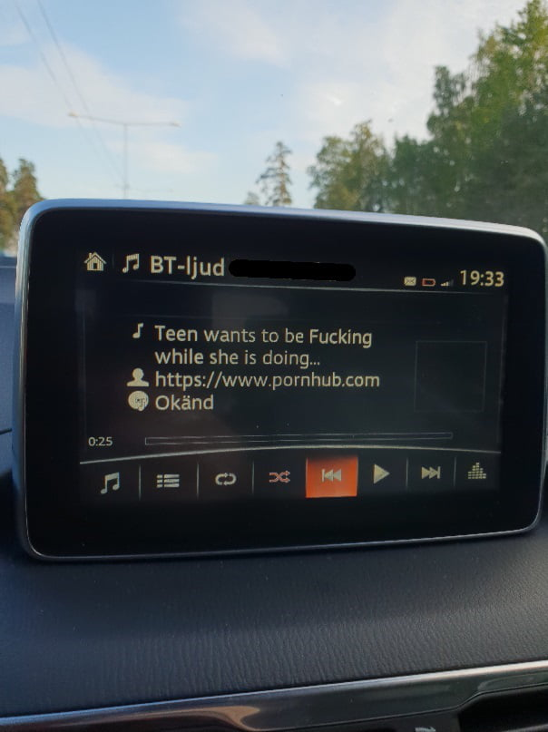 Fucking Daddy While He Drives