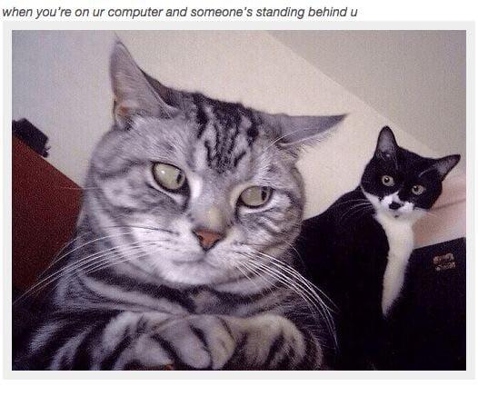My pussy always smells like fish - 9GAG