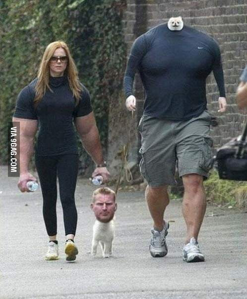Face and body swap