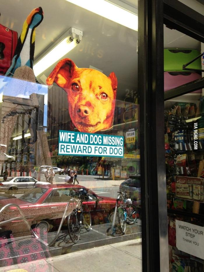 Reward for dog.