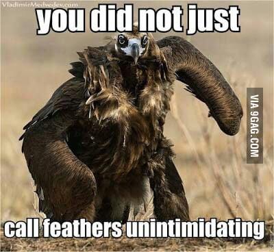 Nonintimidating or unintimidating