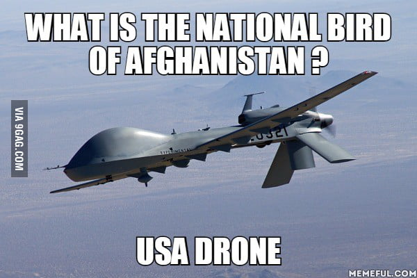 What Is The National Bird Of Afghanistan USA Drone