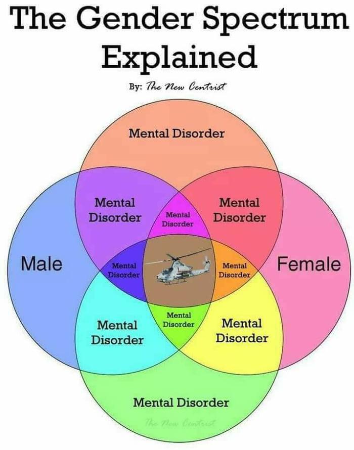 Gender Venn Diagram Geccetackletarts
