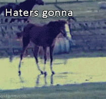 Haters gonna... Hate