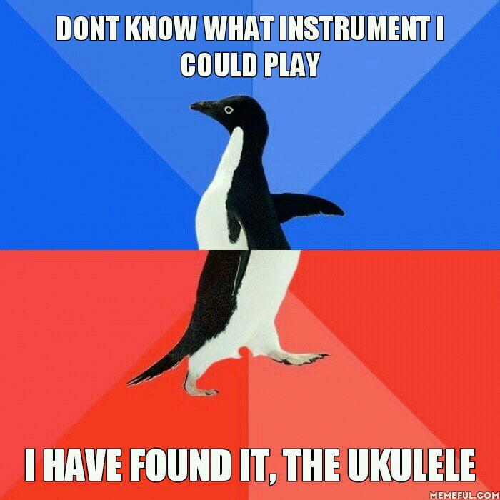 After Borrowing My Friends Ukulele I Managed To Memorize 6 Chords