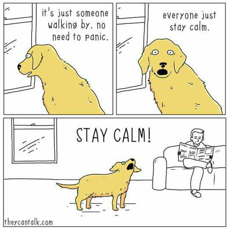 STAY CALM!! JUST CALM DOWN!