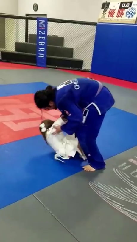 Dad vs daughter judo