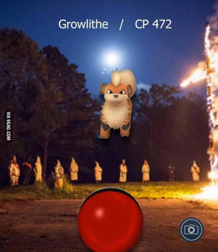 how to get growlithe in pokemon go