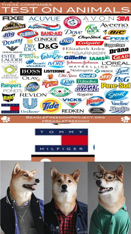 I'm curious, what is a company like tommy hilfiger(clothing?)doing to animals? but loreal and febreze and so on IT'S TIME TO STOP. not cool