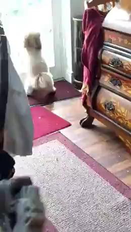 Help me step bro. I'm stuck.