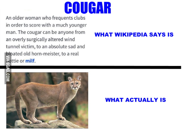 What is cougars means