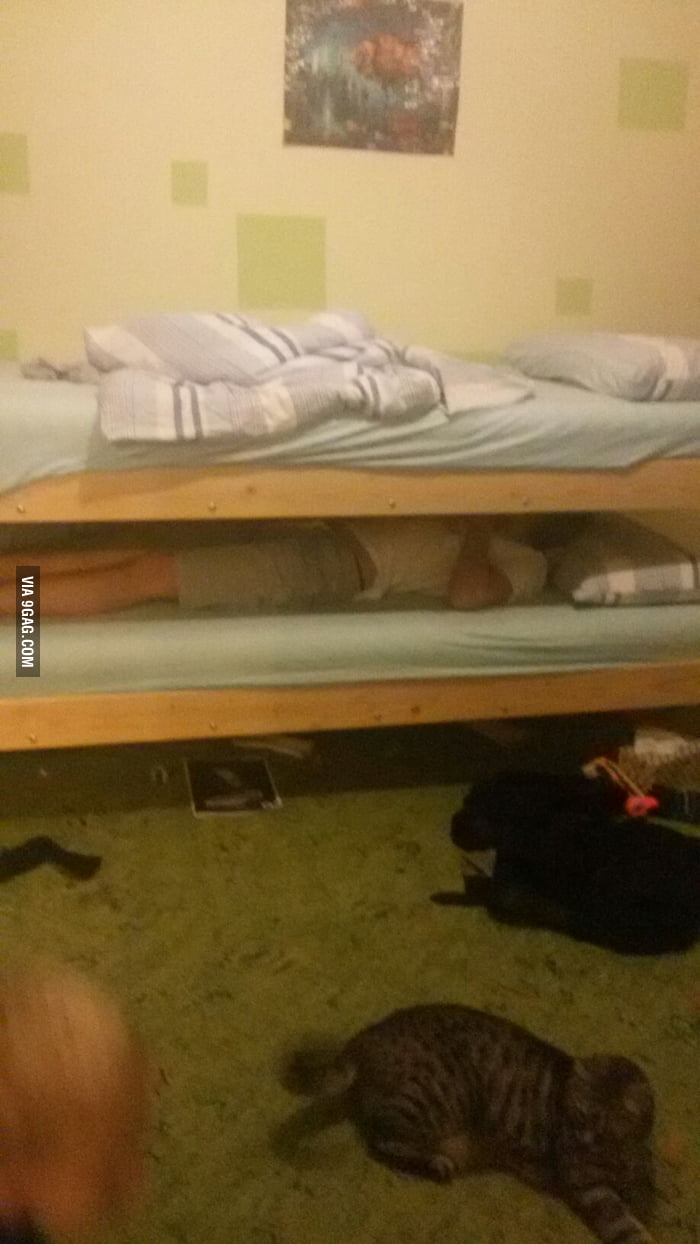 so this is my homemade two floor bed for students 9gag so this is my homemade two floor bed for students