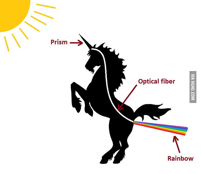 Pictures of unicorns farting rainbows