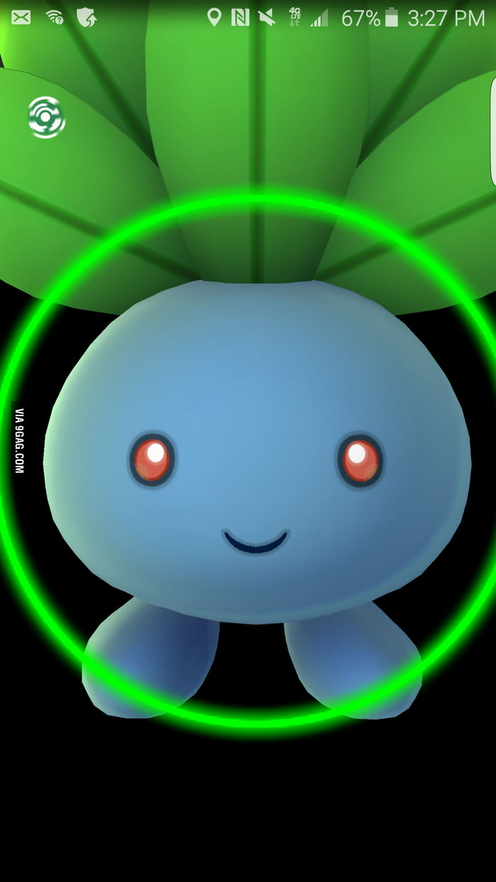 Back The F K Up You Blueberry Pokemon Go Glitch 9gag