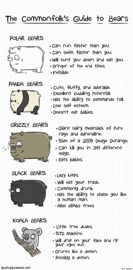 Some bears are polar opposites