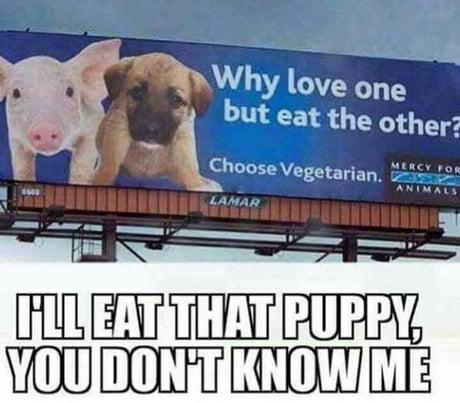 Dem puppies be tender af