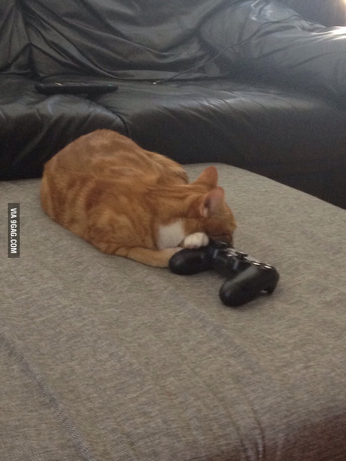 How I know my boyfriend spends too much time gaming  - 9GAG