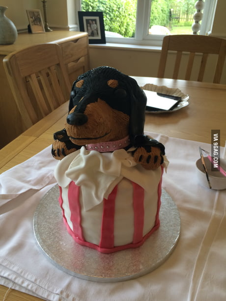 Fine I Made A Dachshund Birthday Cake 9Gag Funny Birthday Cards Online Unhofree Goldxyz