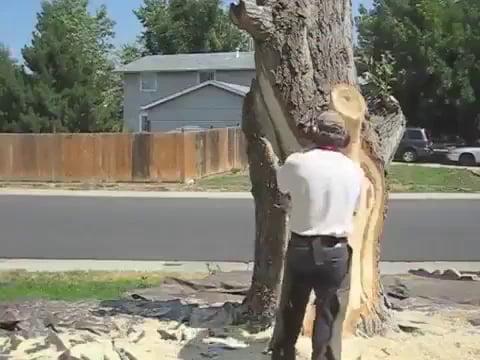 Lueb Popoff bringing Wood to Life